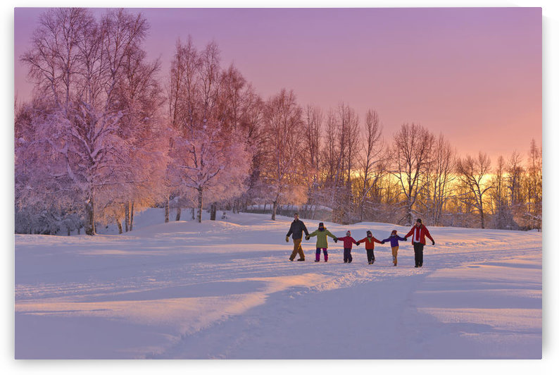 Family Group, Holding Hands, Walk On A Snow Path At Sunset With A Birch Forest In The Background, Russian Jack Springs Park, Anchorage, Southcentral Alaska, Winter by PacificStock