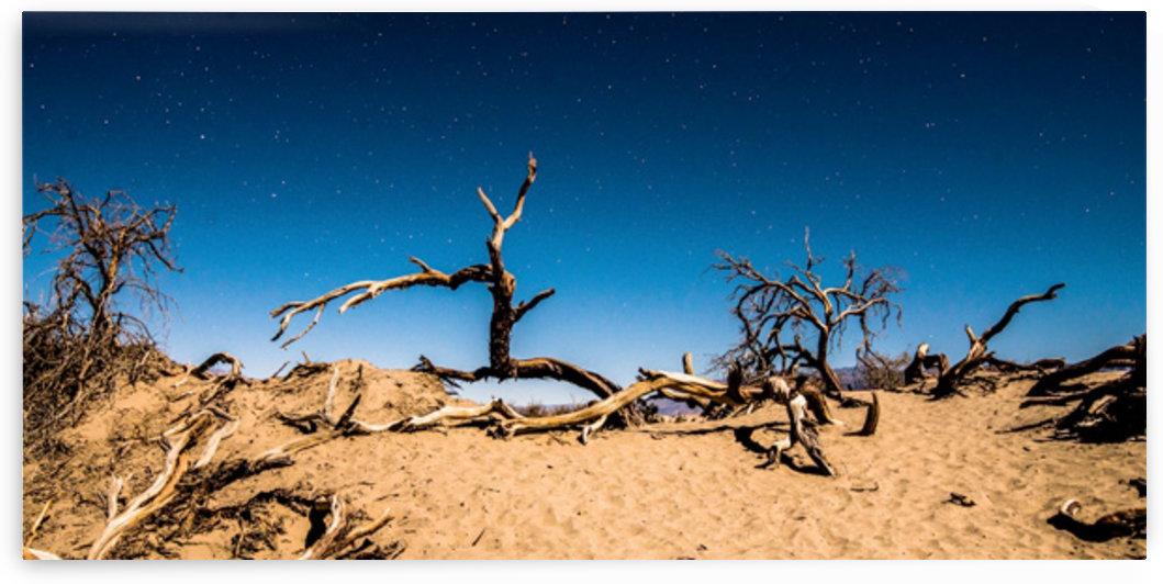 Death Valley Night by Fabien Dormoy