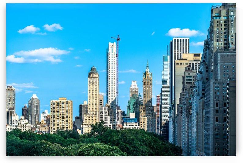 NYC Skyline below CP  by vincenzo