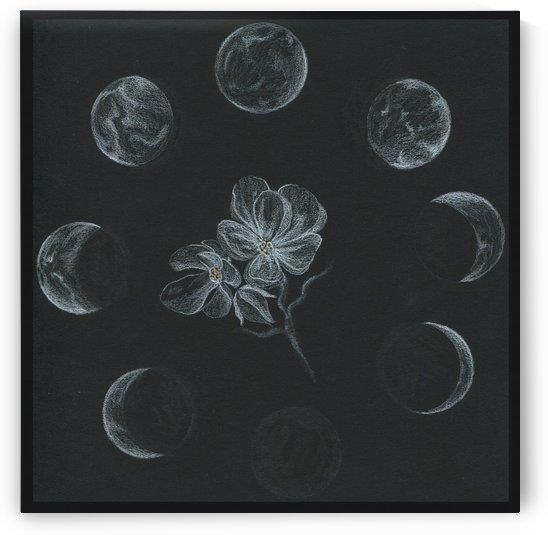 lunar system by Madeleine Sibthorpe
