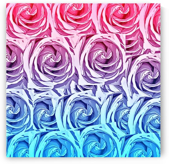 closeup pink rose and blue rose texture pattern abstract background by TimmyLA