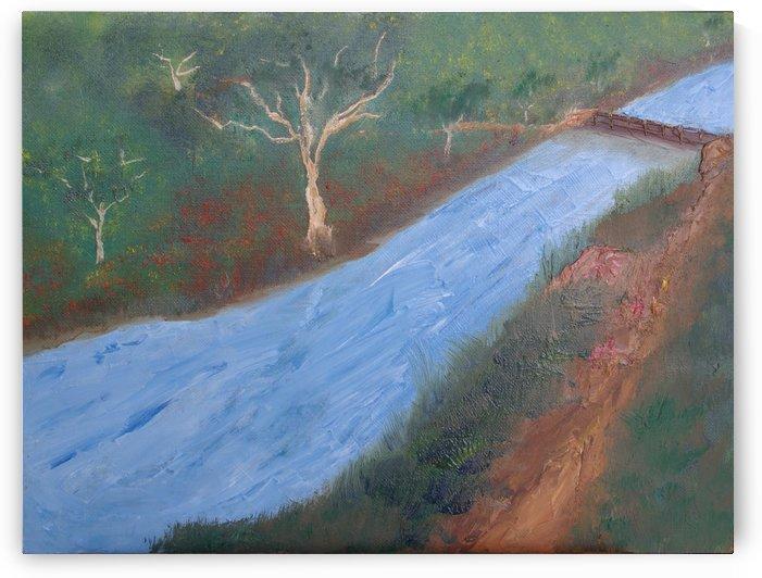 Fast flowing river. by Alan Skau