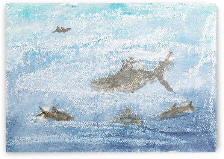 Sharks. by Alan Skau