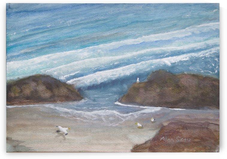 Seagulls on an empty beach. by Alan Skau