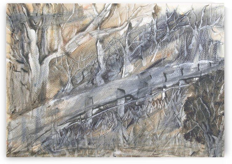 Bushfire Aftermath. by Alan Skau