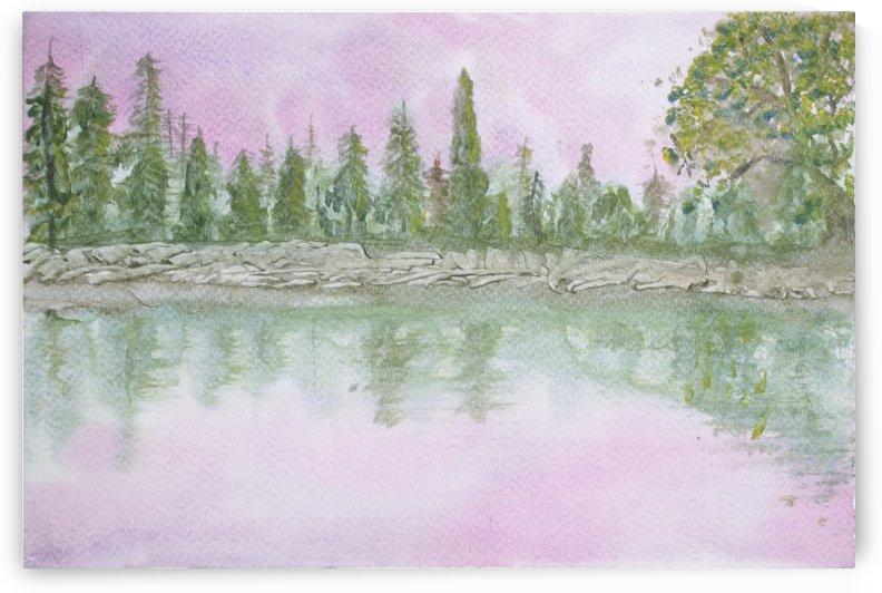 Pine reflections. by Alan Skau