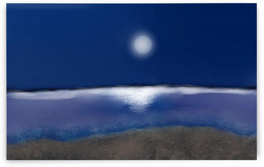 moon night by MENG LU