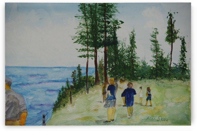 Anson's Point- Norfolk Island. by Alan Skau