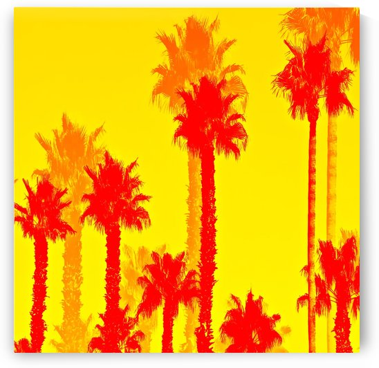 orange palm tree pattern abstract with yellow background by TimmyLA