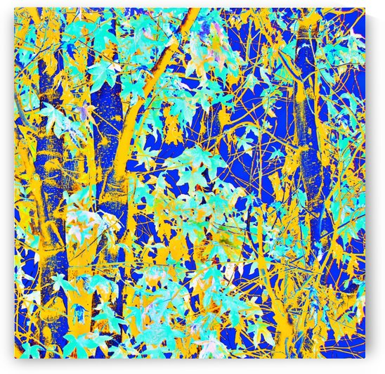 green maple tree leaf with blue and yellow abstract background by TimmyLA