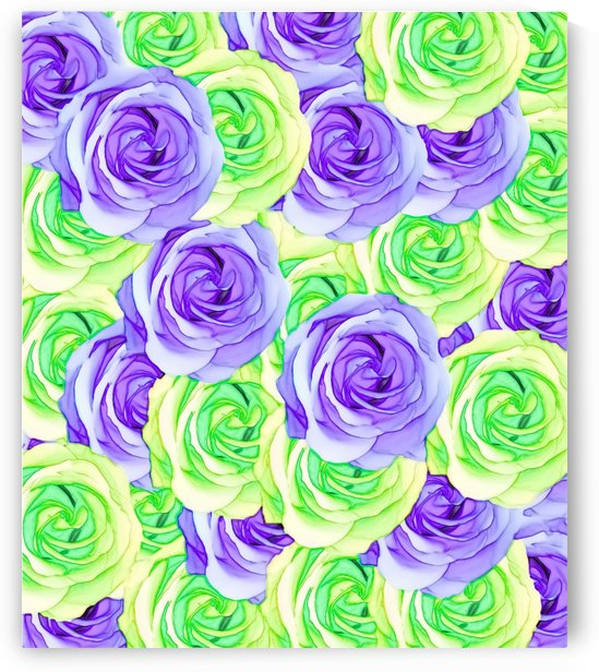 purple rose and green rose pattern abstract background by TimmyLA