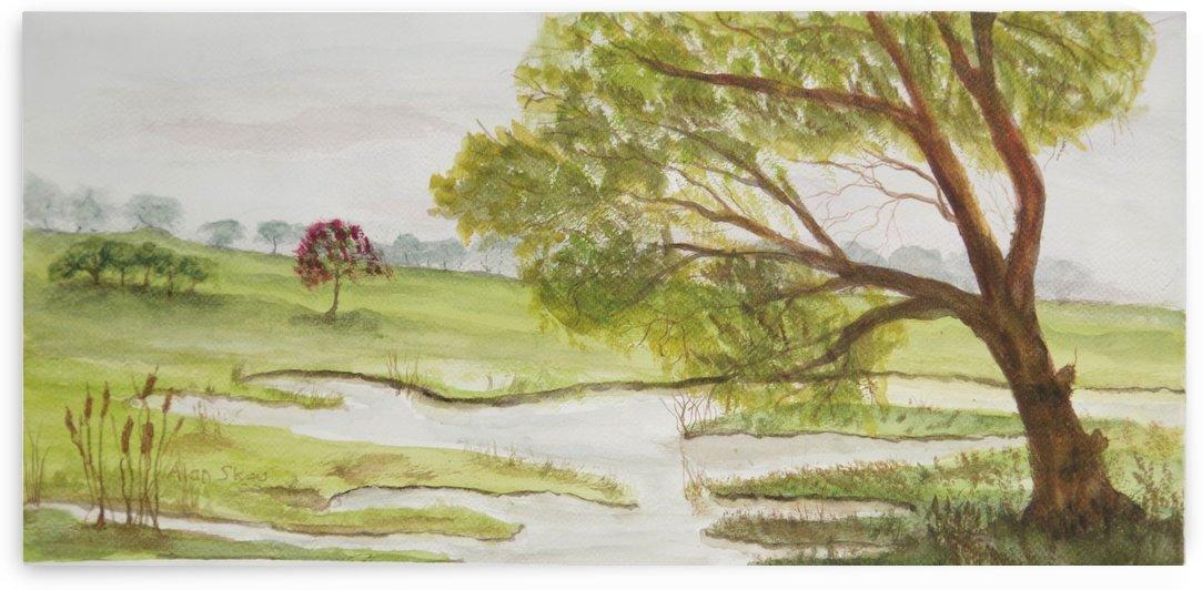 Undulating Grassland & Still Water. by Alan Skau