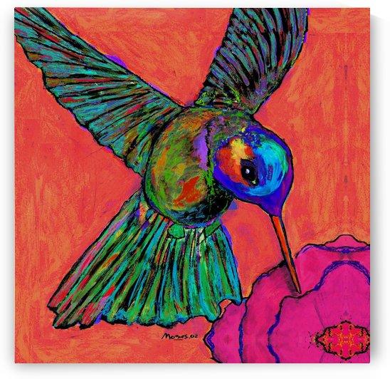 HUMMINGBIRD ON ORANGE by Moses