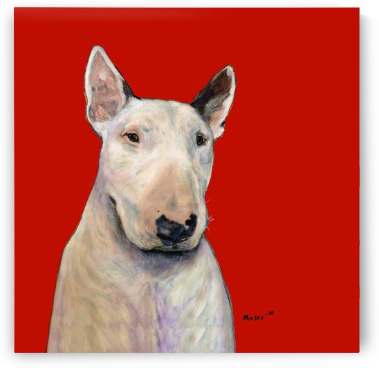 BULL TERRIER ON RED by Moses