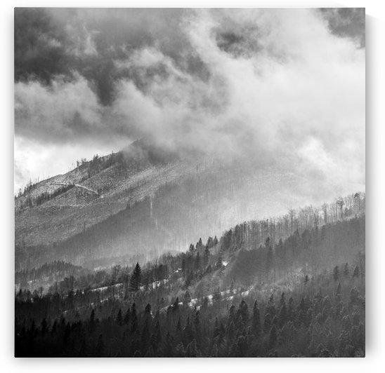 Winter Landscape V by Marcin Lukaszewicz