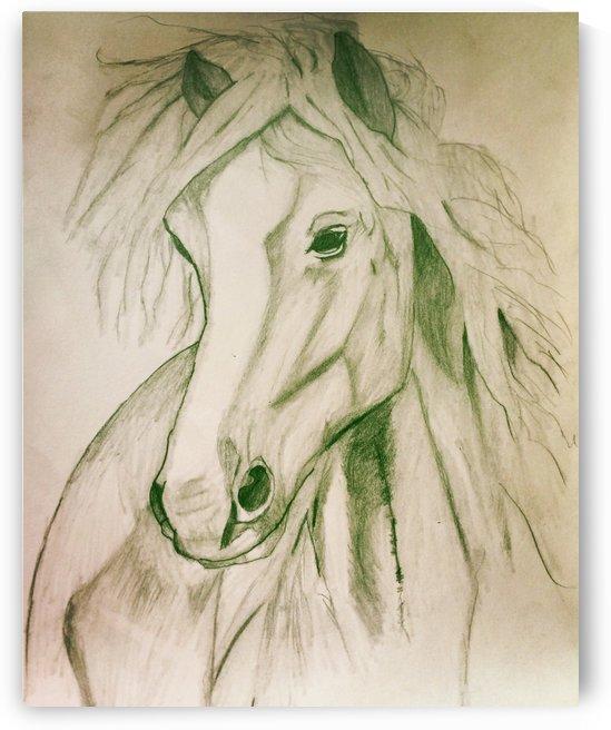 Mustang by Zejun Zhao