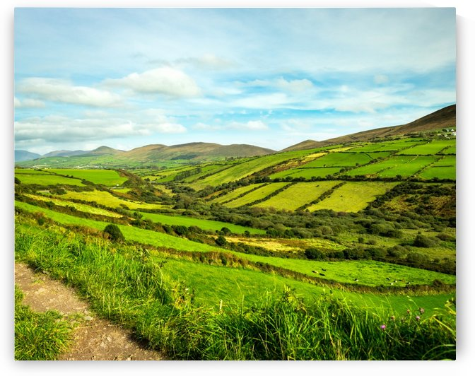 Ireland Country Side by Heather Scully