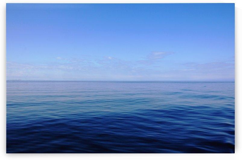 Forever Blue by Deb Oppermann