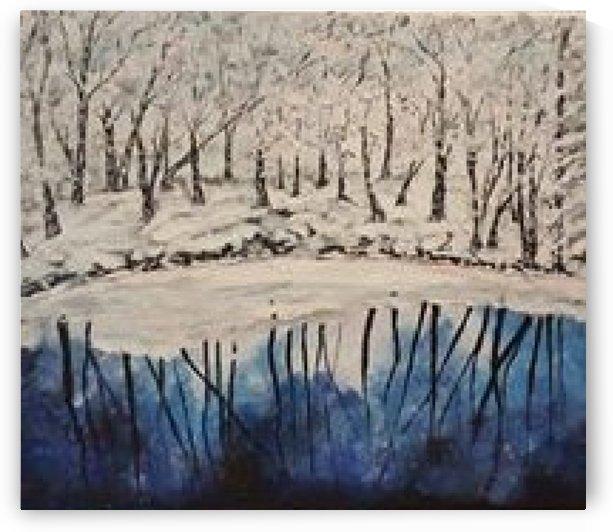 The lake froze by ciobanu c veronica