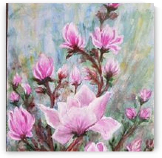 magnolias by ciobanu c veronica