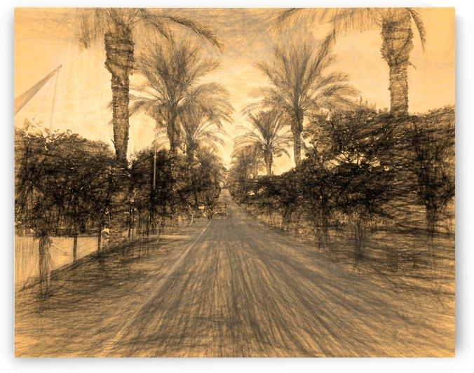 The Raanana Park 2 by raanan ben ari