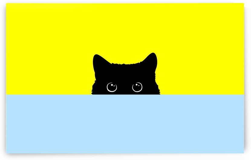 Kitty by zelko radic bfvrp