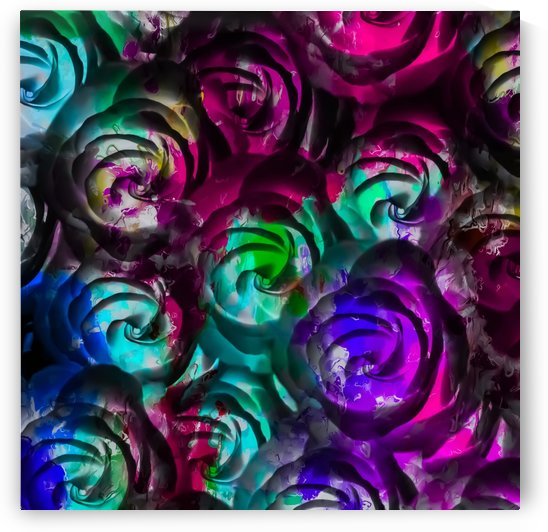 closeup rose texture pattern abstract background in red purple blue by TimmyLA