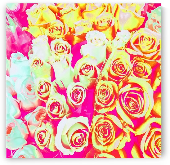 bouquet of roses texture pattern abstract in pink red yellow by TimmyLA