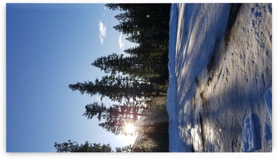 Sunrise Shuwswap Lake by Mia Clement