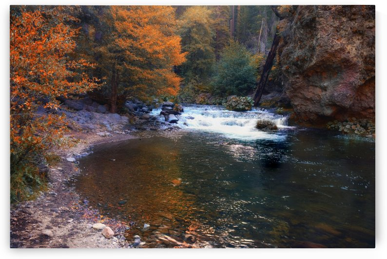 Deer Creek In Autumn by Frank Wilson