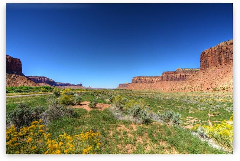 455.41- Canyonland by Paul Winterman