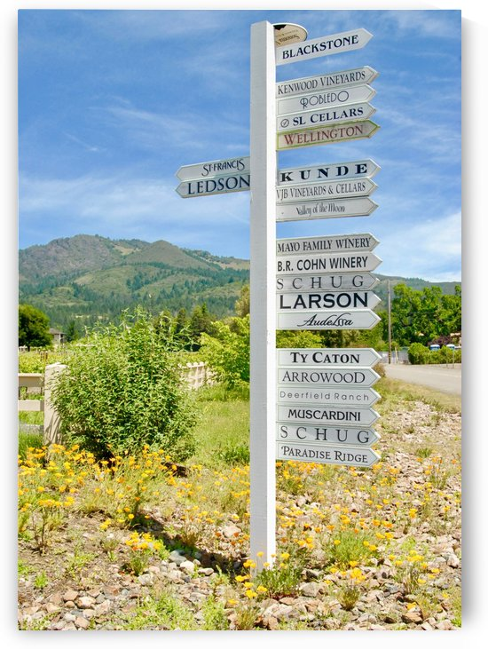 Winery Signs by Robin Buckley