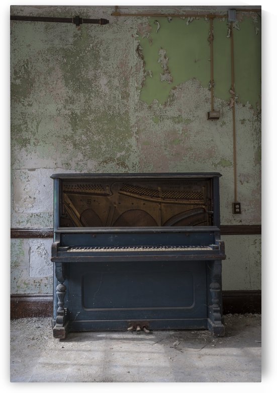 Abandoned Piano by Steve Ronin