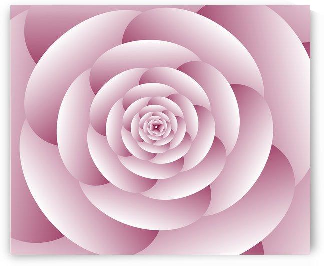 Abstract Flower Spiral Artwork by rizu_designs