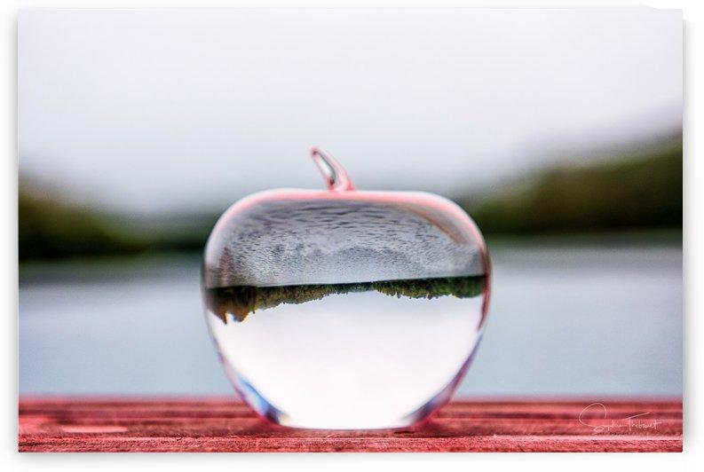 La pomme est dans le ver(re) by Sophie Thibault