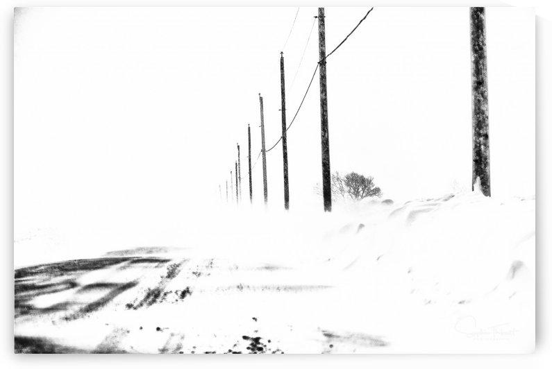 Jour de tempête by Sophie Thibault