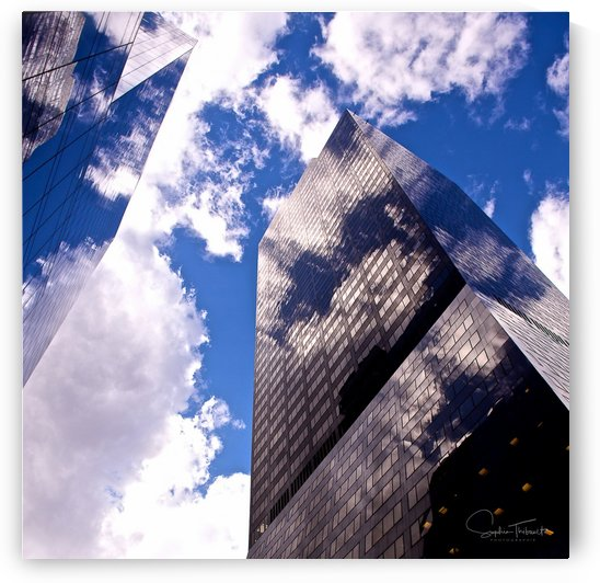 Reflections in the sky by Sophie Thibault