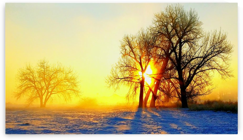 Misty winter morning by Redman2wolf