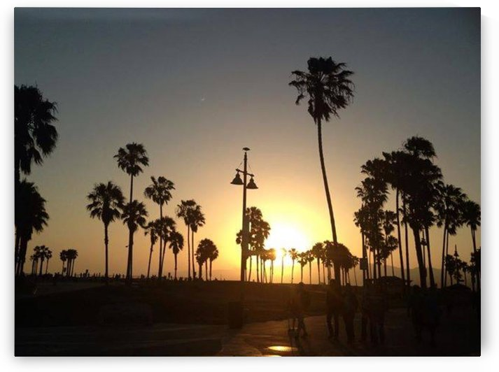 Venice Beach, California by D - Mitch The Poet