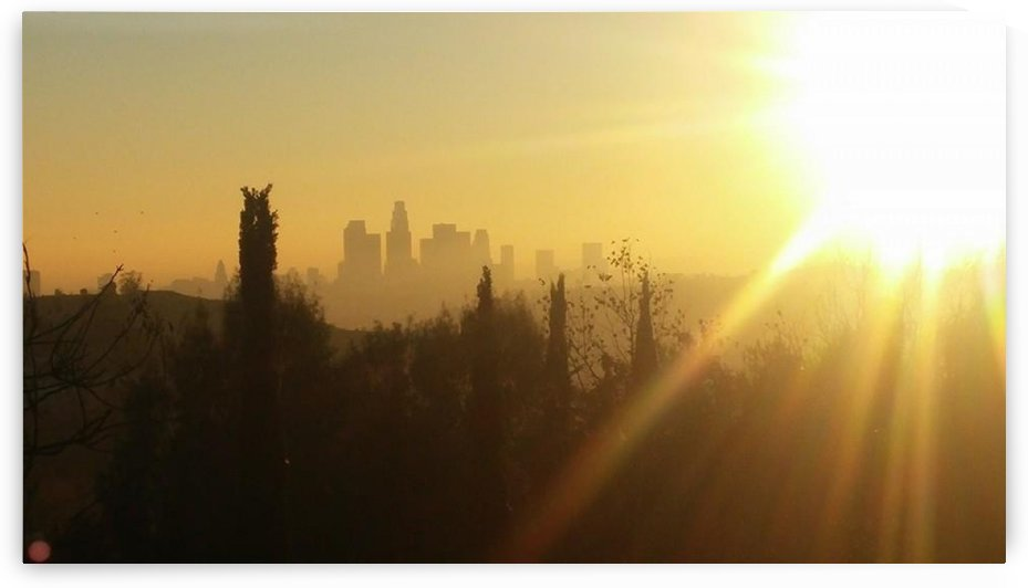 Los Angeles, Ca by D - Mitch The Poet