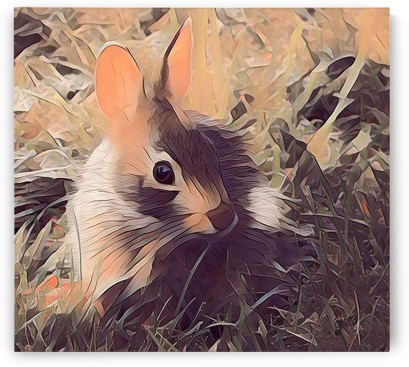 Autumn Rabbit by Nina