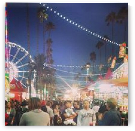 Pomona Fair, California by D - Mitch The Poet