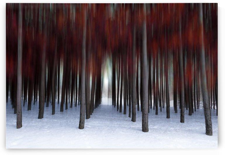 Vibrations by Rene Beaulieu