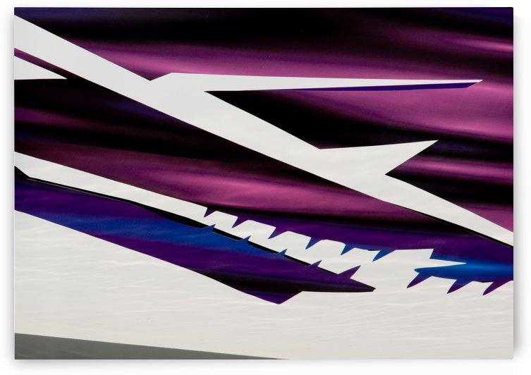 Purple by Michel Soucy