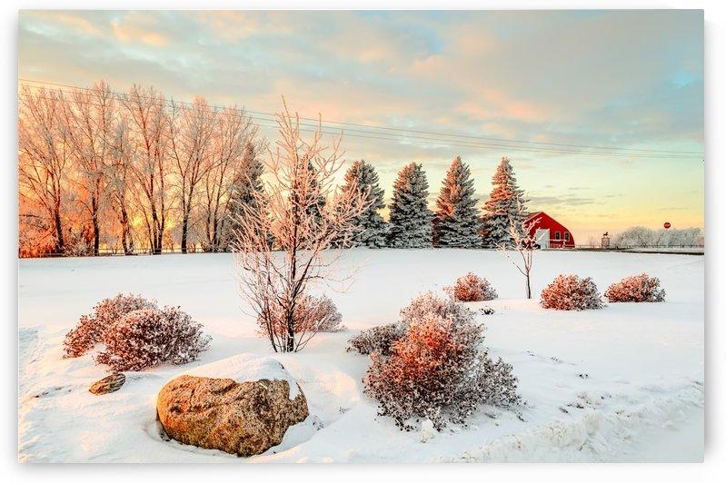 Winter sunset near the red barn by Viktor Birkus