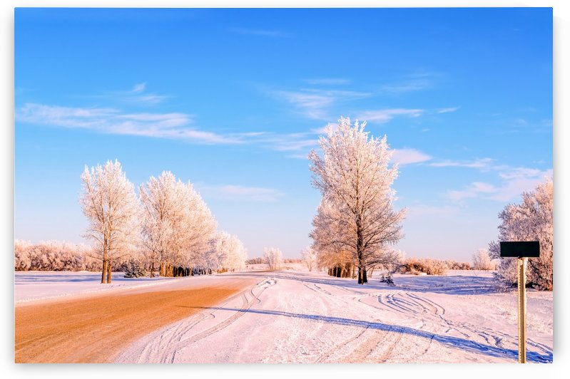 Beautiful, colorful and cold winter with snow and frost by Viktor Birkus