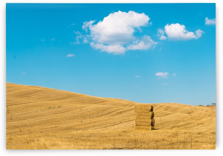 Landscape of Val D Orcia by Pietro Ebner