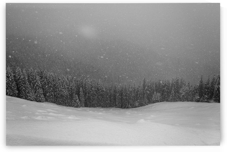 Winter mountain by Ovidiu