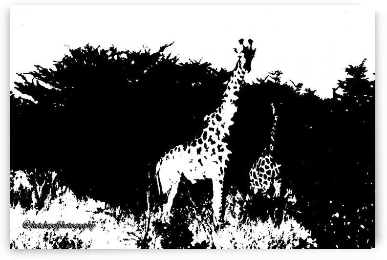 Negative Giraffes Bots 1991 by Eric and Pam Schmidt