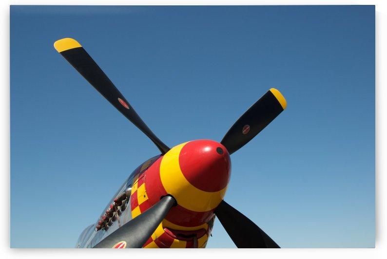 P-51 Mustang Propeller by Wallshazam